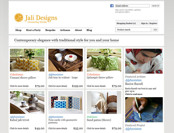 the website landing page